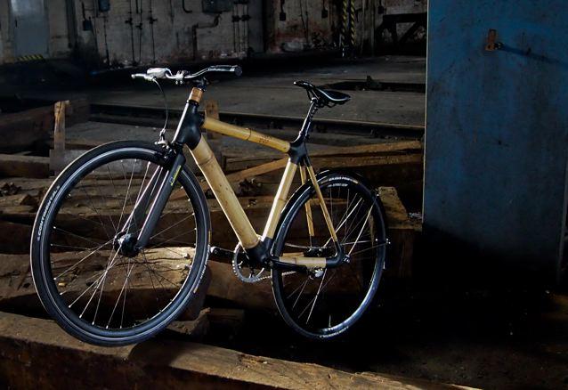 Bau Dir Dein Bambus Bike Velophil