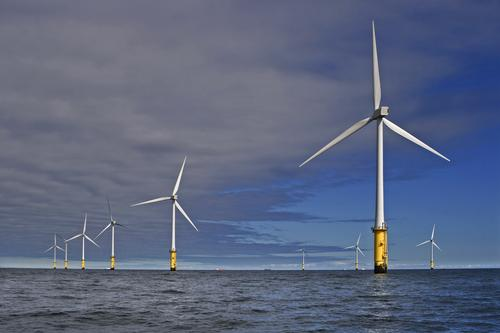 offshore windparks k nnten fischfarmen werden gr ne gesch fte. Black Bedroom Furniture Sets. Home Design Ideas