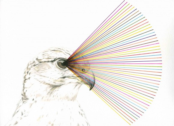 """Ein Bild aus der aktuellen Reihe """"Prism"""""""