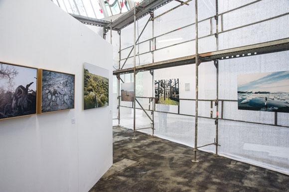 Ausstellungsarchitektur auf der P/ART 2013. Foto: Chantal Wagner