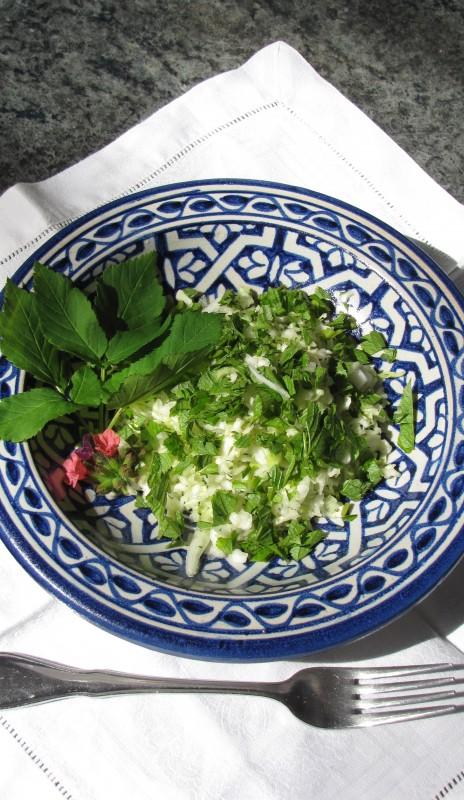 Giersch und Spitzkohl – zwei Pflanzen, die sich auf dem Teller bestens ergänzen. Foto: Katharina Henne