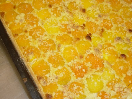 aprikosenkuchen.jpg