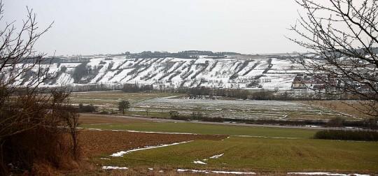 Steinriegellandschaft zwischen Weikersheim und Elpersheim, Taubertal