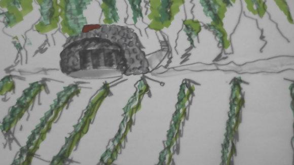 Ausheckhütte mit Stoff-Traubendach (1 von 1)