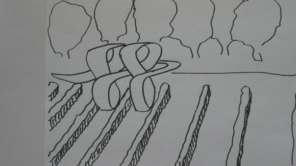 Organisch im Weinberg (1 von 1)