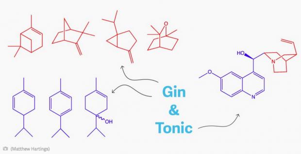 Gin_Tonic_Chemie