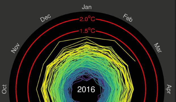 Aufgedreht: Klicken Sie auf das Bild, um das animierte Gif der globalen Temperaturen zu sehen. © Climate Lab Book/@edhawkins
