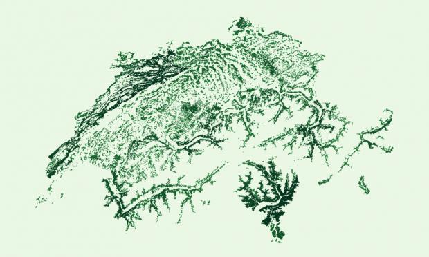 Die Schweiz – gemalt mit ihren eigenen Wäldern. © NZZ
