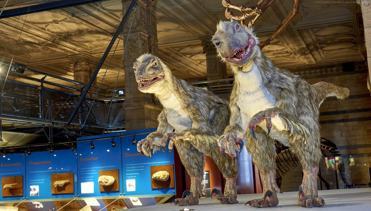 """Mein Museum ist cooler als dein Museum"""