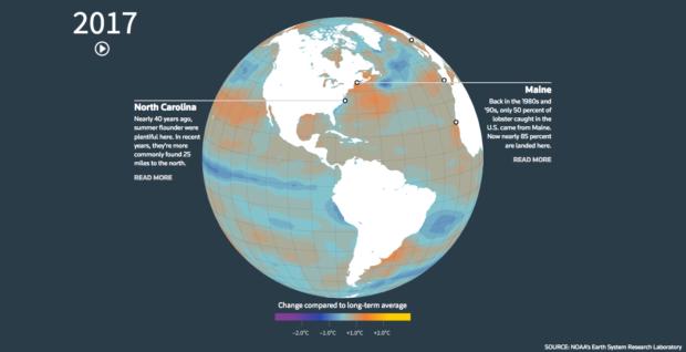 Klimawandel: Fische schwimmen um ihr Leben