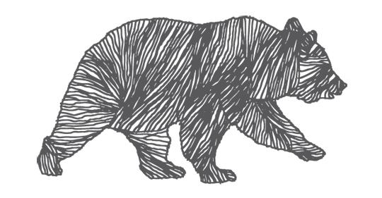 Bär_Logo